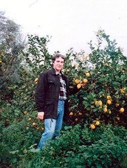 Цитрусовая-плантация