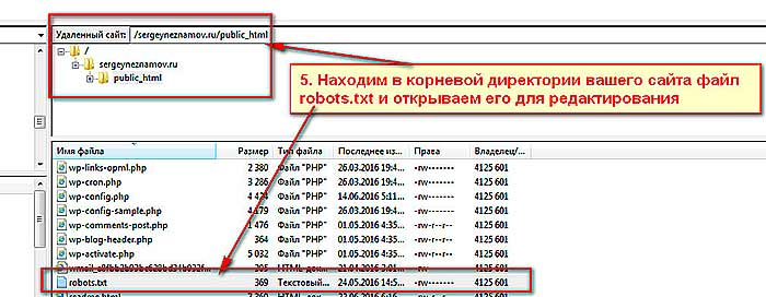 как убрать дубли страниц в robots.txt