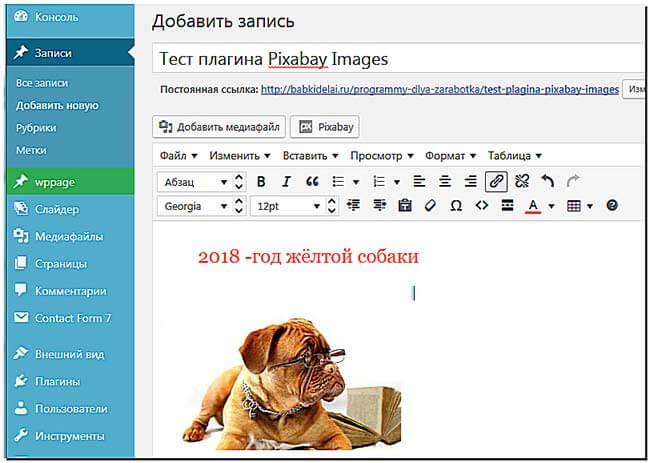 Pixabay-Images-картинка-на-сайте