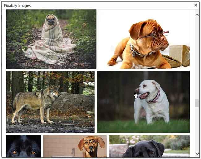 Pixabay-Images-выбор-картинки
